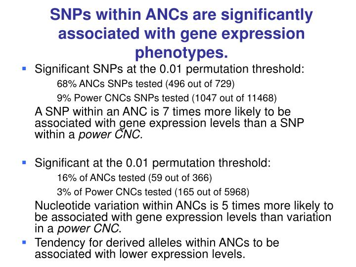 SNPs within ANCs are significantly associated with gene expression phenotypes.