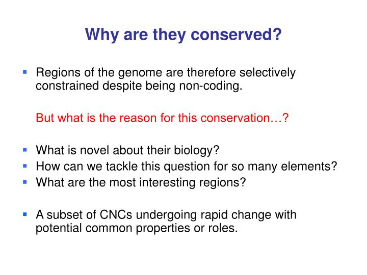 Why are they conserved?