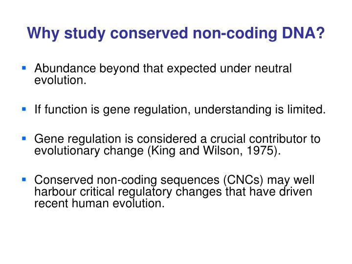 Why study conserved non-coding DNA?