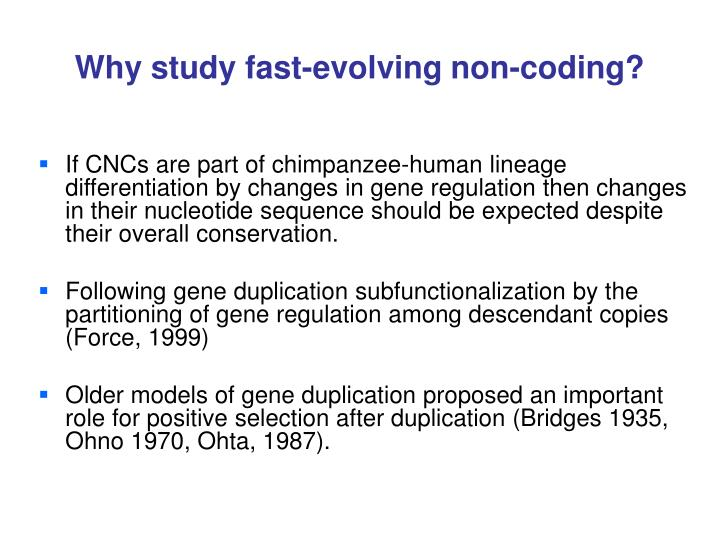 Why study fast-evolving non-coding?