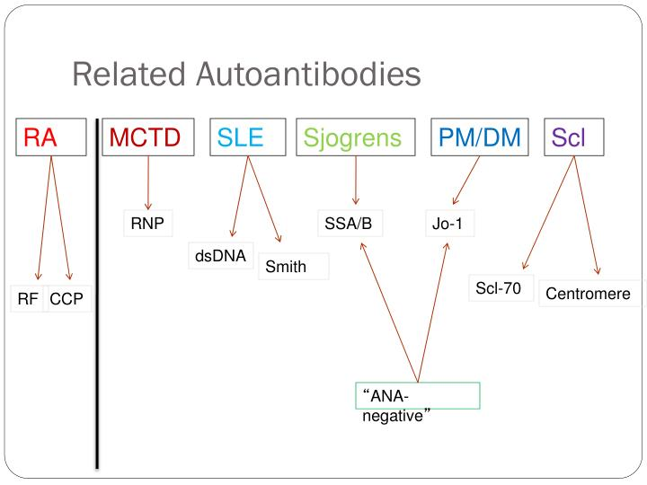 Related Autoantibodies