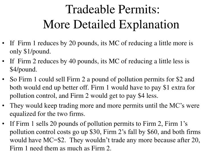 Tradeable permits more detailed explanation