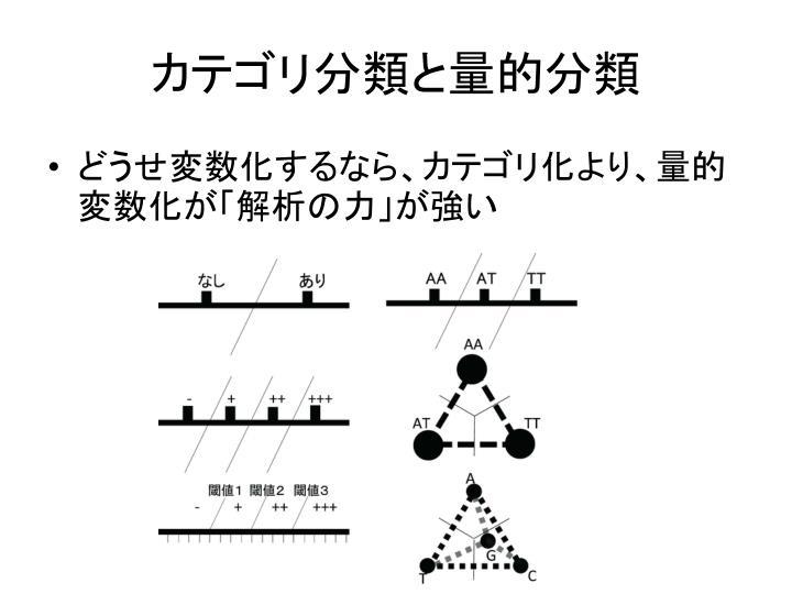 カテゴリ分類と量的分類