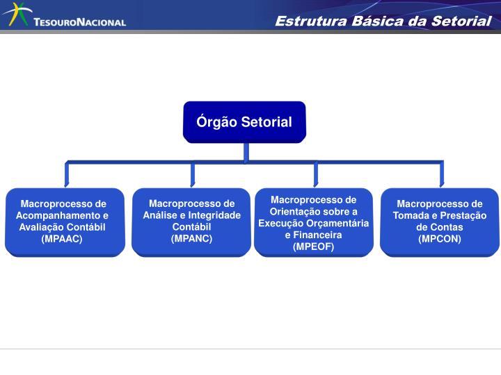 Estrutura Básica da Setorial