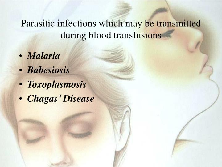 Parasitic infections which may be transmitted during blood transfusions