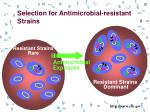 selection for antimicrobial resistant strains