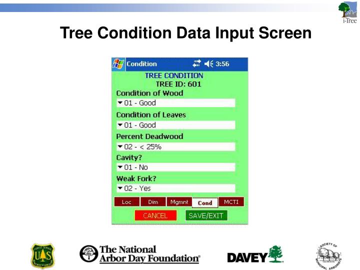 Tree Condition Data Input Screen