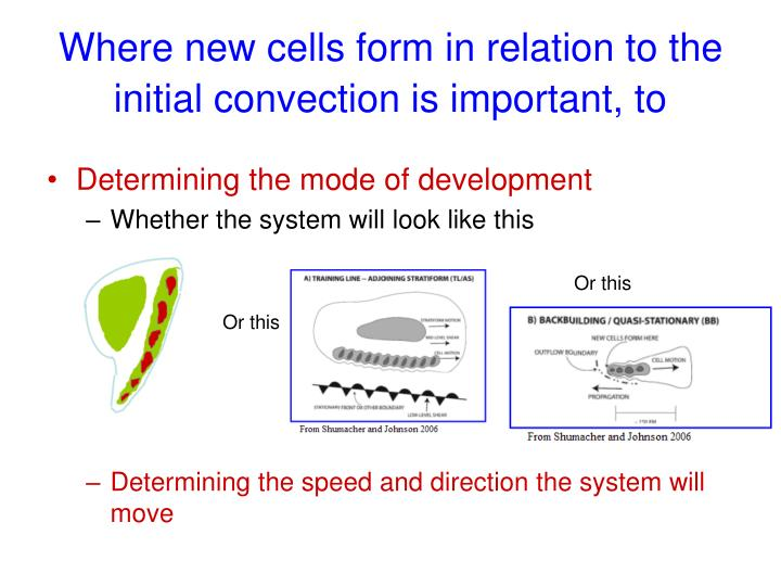 Where new cells form in relation to the initial convection is important, to