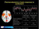 pharmacodynamics of pain responses to remifentanil