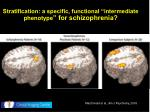 stratification a specific functional intermediate phenotype for schizophrenia