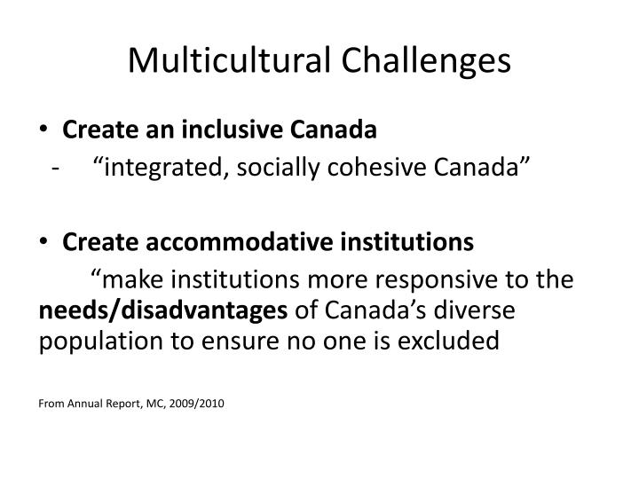 Multicultural challenges