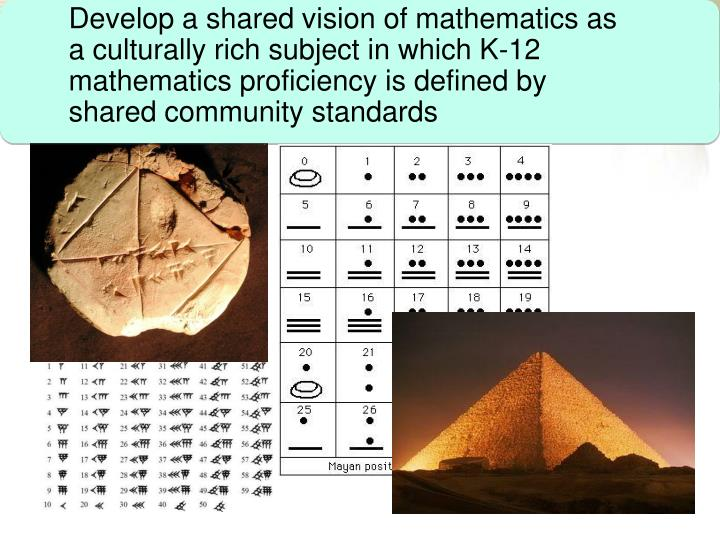 Develop a shared vision of mathematics as a culturally rich subject in which K-12 mathematics proficiency is defined by shared community standards