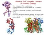 structure of p5cr exemplifies challenges for homology modeling