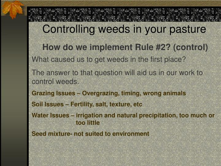 Controlling weeds in your pasture