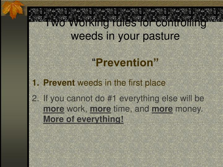 Two Working rules for controlling weeds in your pasture