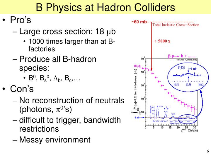 B Physics at Hadron Colliders