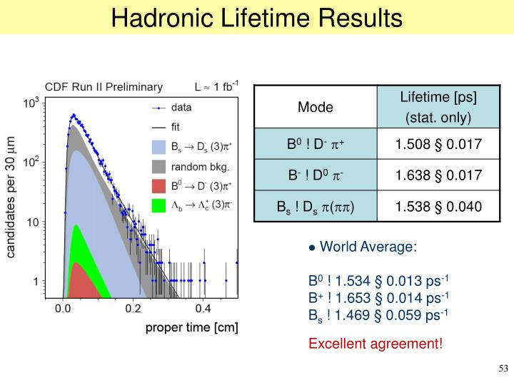 Hadronic Lifetime Results