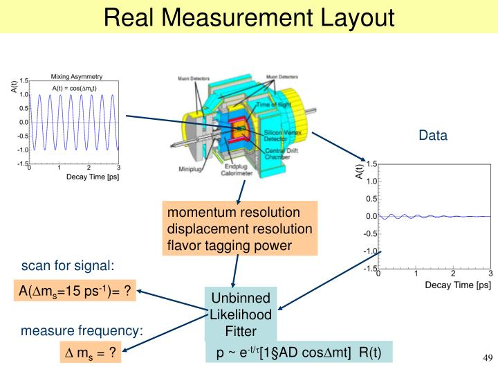 Real Measurement Layout