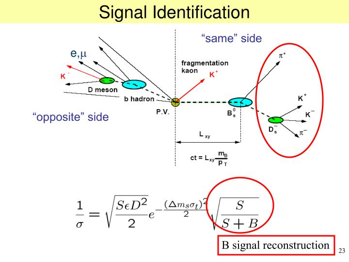Signal Identification