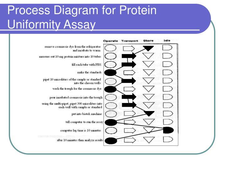 Process Diagram for Protein Uniformity Assay
