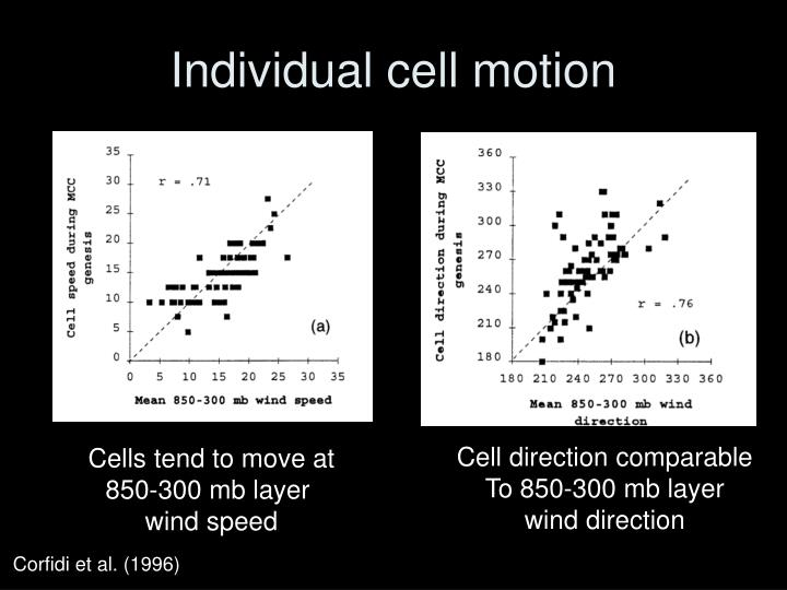 Individual cell motion