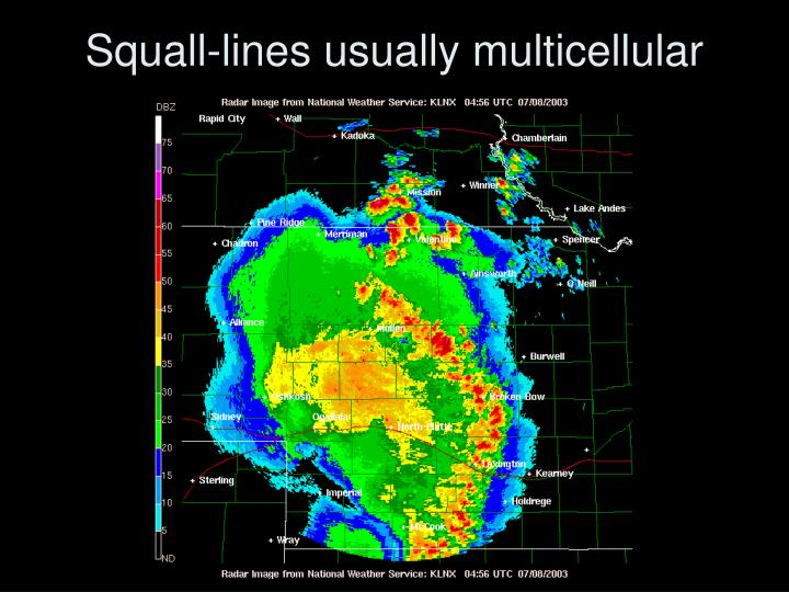 Squall-lines usually multicellular