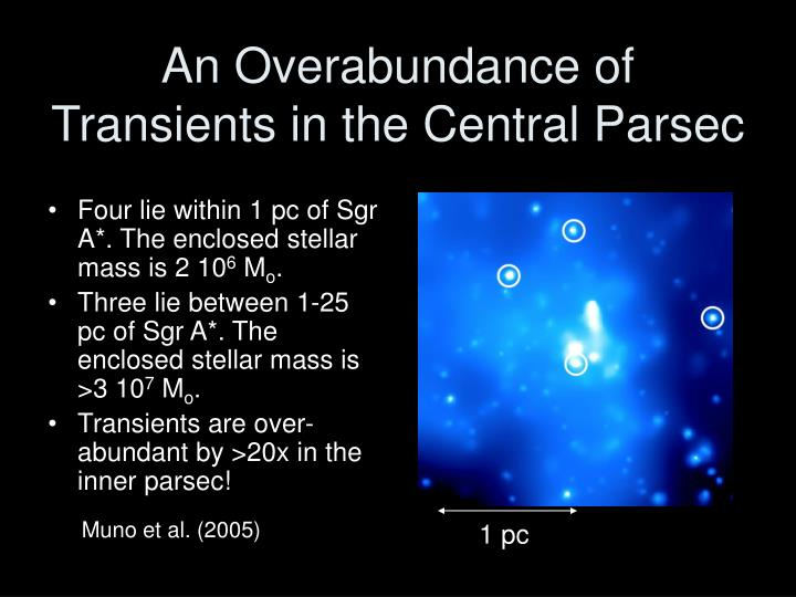 An Overabundance of Transients in the Central Parsec