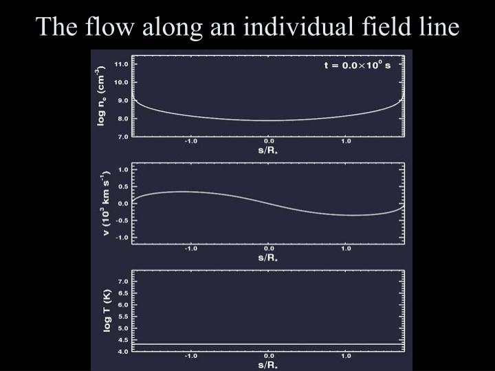 The flow along an individual field line