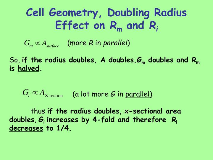 Cell Geometry, Doubling Radius Effect on