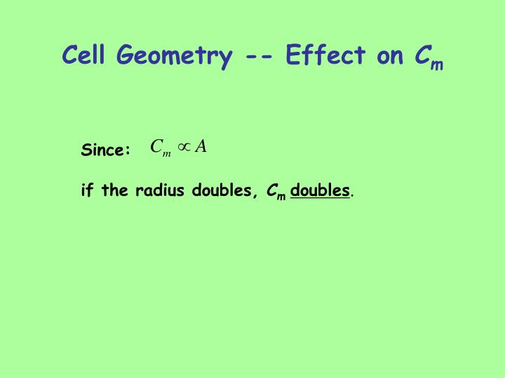 Cell Geometry -- Effect on