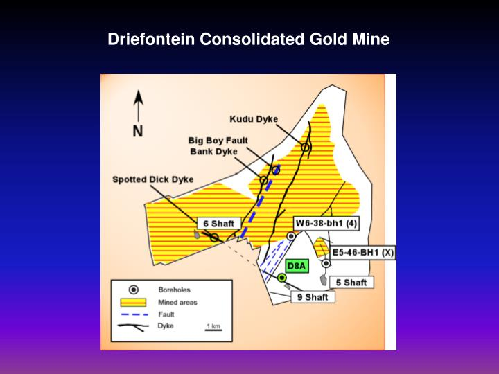 Driefontein Consolidated Gold Mine