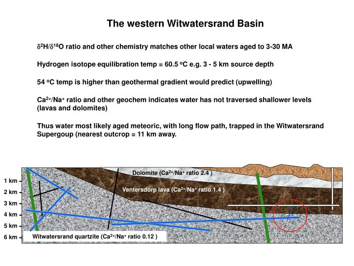 The western Witwatersrand Basin