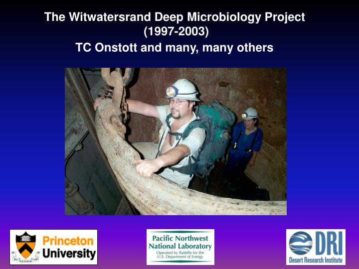 The Witwatersrand Deep Microbiology Project