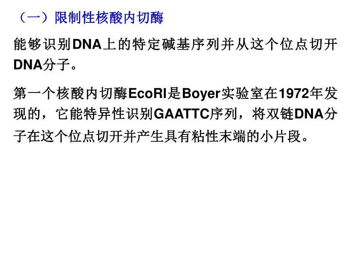 (一)限制性核酸内切酶