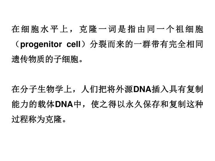 在细胞水平上,克隆一词是指由同一个祖细胞(