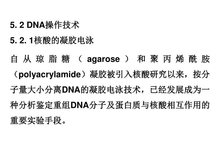 5. 2 DNA