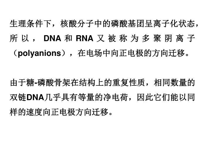 生理条件下,核酸分子中的磷酸基团呈离子化状态,所以,