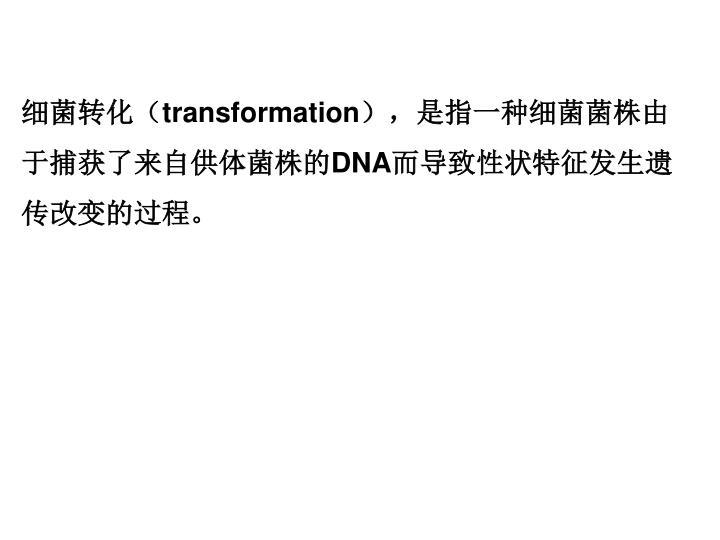 细菌转化(