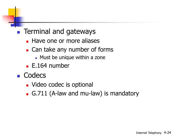 Terminal and gateways