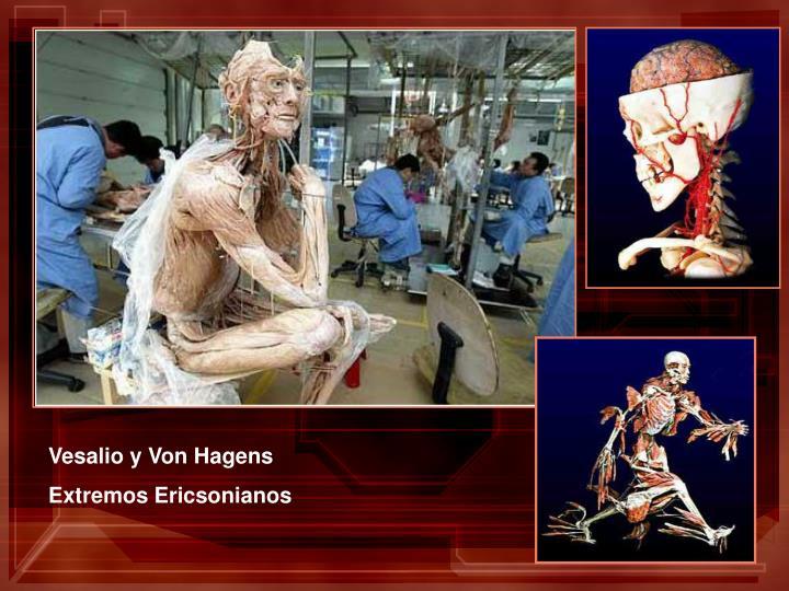 Vesalio y Von Hagens
