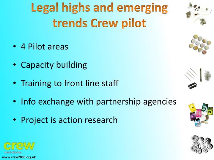 Legal highs and emerging trends Crew pilot