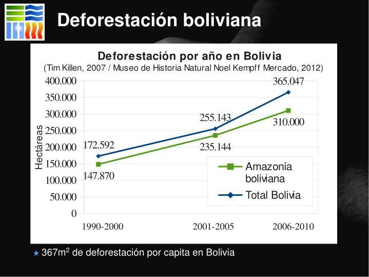 Deforestación boliviana