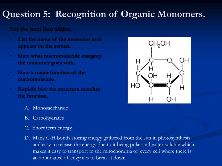 Question 5:  Recognition of Organic Monomers.