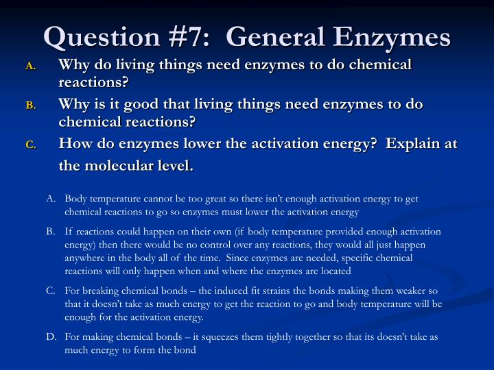 Question #7:  General Enzymes