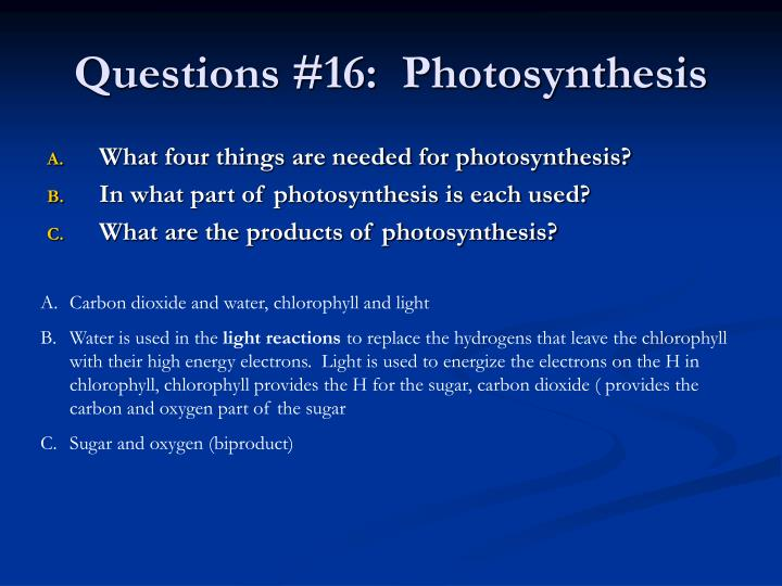 Questions #16:  Photosynthesis
