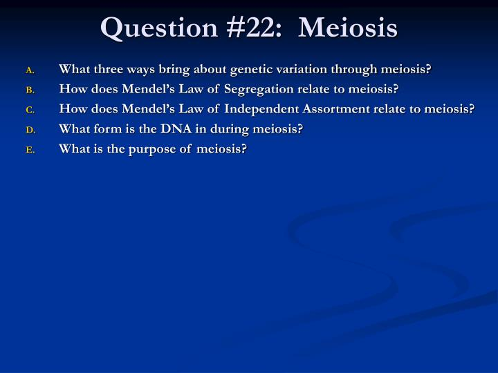 Question #22:  Meiosis