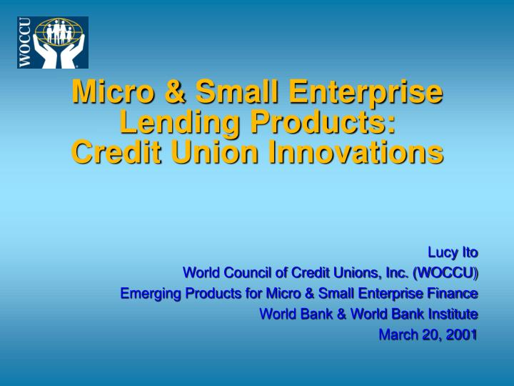 Micro small enterprise lending products credit union innovations