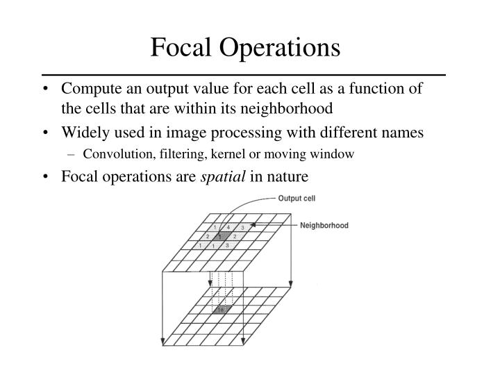 Focal Operations
