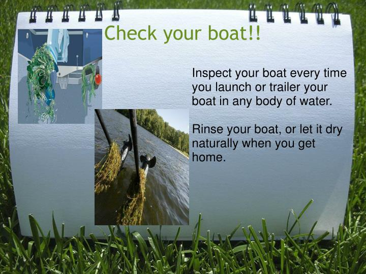 Inspect your boat every time you launch or trailer your boat in any body of water.