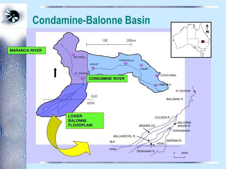 Condamine balonne basin